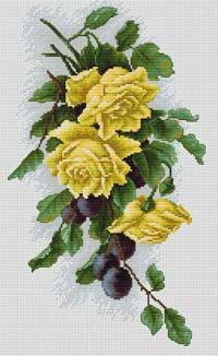 Жёлтые розы с виноградом