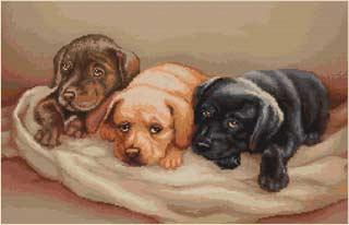 Вышивка крестом Три собачки