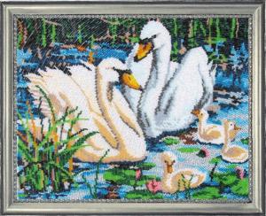 - Лебединая семья